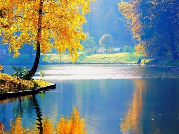 Есента има своята година
