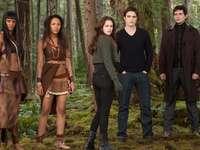 Twilight Saga - The Twilight Saga är en serie med fem romantiska fantasifilmer från Summit Entertainment baserat p