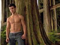 Muscled Taylor Lautner