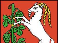 Znak Lublin - Znak zobrazuje stříbrnou kozu se zlatými vlnitými rohy a zlatými kopyty umístěnými v červen
