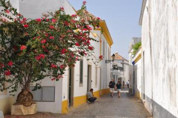 A cobbled street in Portugal