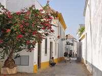 Калдъръмена улица в Португалия