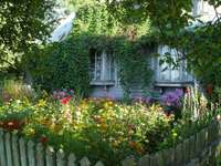 casa velha no jardim