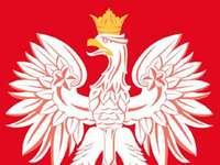 Hřeben Polska - Uspořádejte erb Polska.
