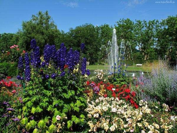 Een kleurrijke zomertuin online puzzel