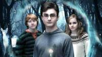 Harry Potter 1 - harry potter w puzzlach
