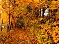 το φθινόπωρο μου