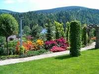 Ogródek przydomowy