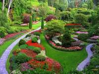 colorful fabulous garden