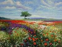 flores silvestres no prado