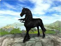 Star Stable Frisian xD