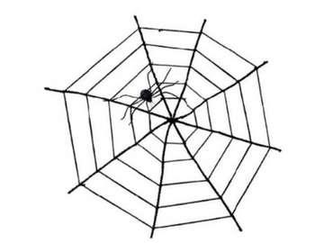 spider is new - pajęczaki i pośrednicy