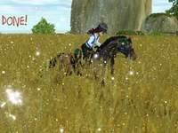 3: th puzzle starstable!