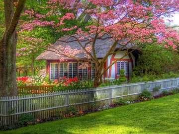 Cottage grazioso