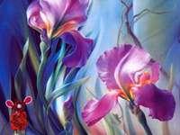 Galerie Tara-Tara květiny - Fialové lilie a jiné květiny