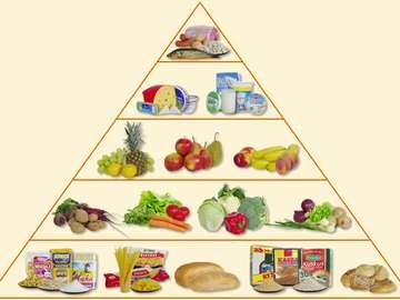 piramida żywienia - Spróbuj ułożyć piramidę żywienia.