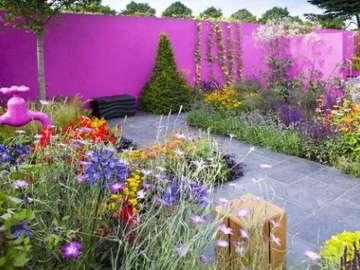 Colors in the garden - Kolorowe ściany w ogrodzie