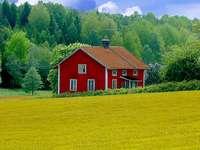Casa Rossa Legno-ban - Casa rossa con prato giallo és háttérképek