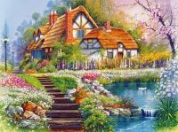 home, garden, pond, stairs