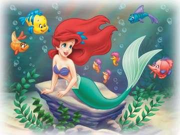 ariel i kwiaty ryby - ariel ryby kwiaty ariel ryby kwiaty  ariel ryby kwiaty