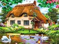 patos de cisnes de jardim em casa