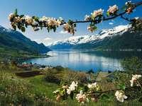 планини, езеро, цъфтящи клонки