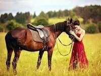Woman and horse - Kobieta z koniem - odpoczynek