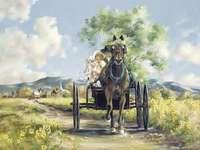 hästvagn på en grusväg