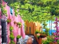 Il pergolato della casa - Il pergolato della casa rosa sul mare