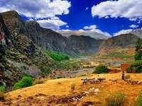 Ορεινό τοπίο του Περού - Ορεινό τοπίο του Περού, αίθουσα με ζώα
