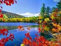 tó, őszi fák, házak