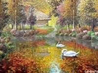 парк, есен, лебеди