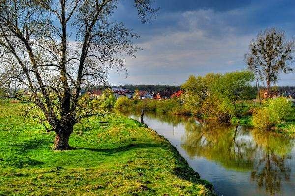 orilla del río verde,