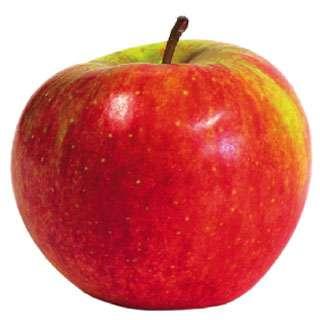 Karols Apfel - Spróbuj ułożyć jabłko (9×9)