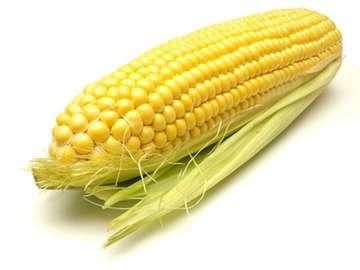 kukurydza Piotra - sPRÓBUJ ULOŻYĆ KUKURYDZĘ