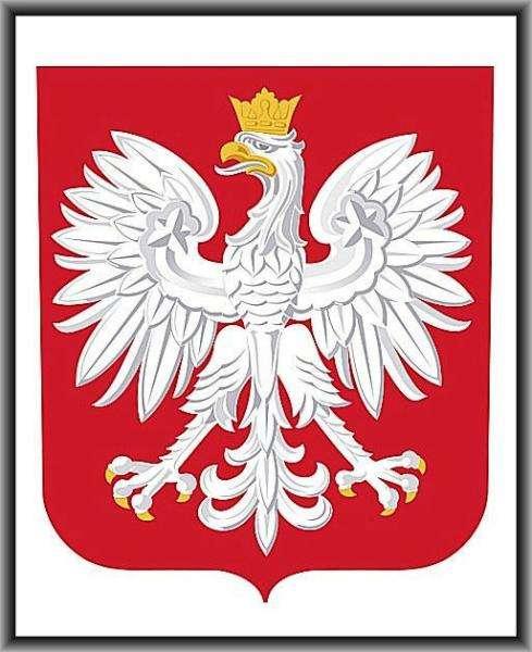 Polský znak