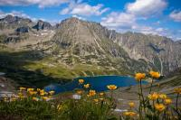 mountains, pond, flowers