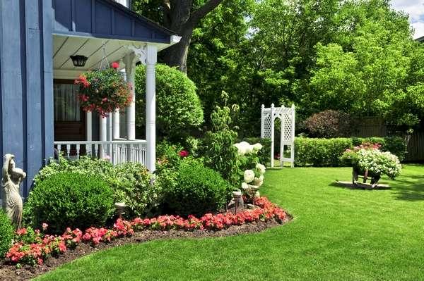 vor dem Haus - In unserem Garten. Zielono na ciepłą wiosne. Dom kwiaty i rabatki (10×10)