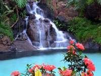 vattenfall och blommor