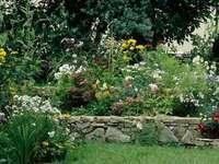 Virágkedvezmény a www - Fa és virágok kövekben
