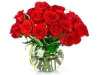Röda rosor - Blommor. Ordna pussel därefter. INTERNET BLOMMAR - Födelsedag, namndag för olika hemtillfällen.