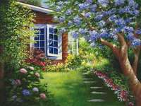 blå blommor - morgon härlighet - morgon härlighet