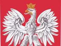 Pools embleem - Pools embleem. Probeer het Poolse embleem te rangschikken.