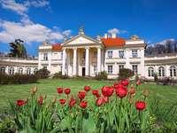 Lite kända polska palats