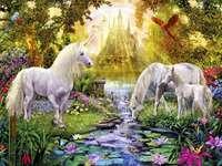 cai lângă pârâu, pădure, soare