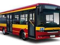 BUS ROUGE - Spróbuj ułożyć czerwony autobus