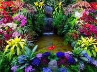 virágos színek ünnepe, kaszkád