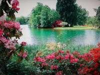 lago calmo, alberi, fiori