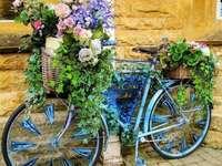 blue bike for flowers