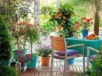 pace, plante, mobilier, flori